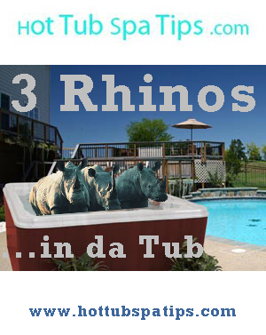 Spacious hot tub with room for 3 rhinos.