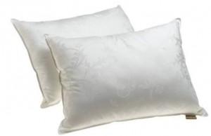 Set of 2 comfortable pillows